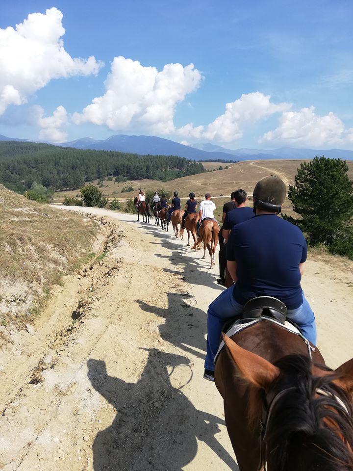 Както казва собственикът на конната база - трябва да усетиш коня, да се слеете в хармония.